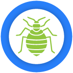 Bed Bug Control Potts Point